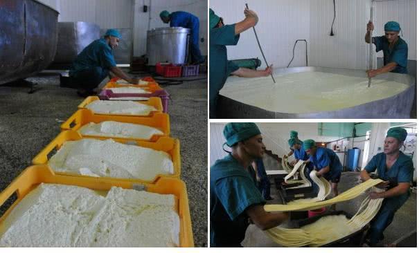 Открыть сырный цех